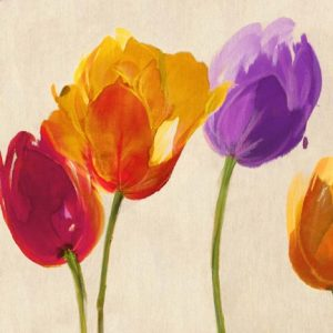 Tulips & Colors (detail)
