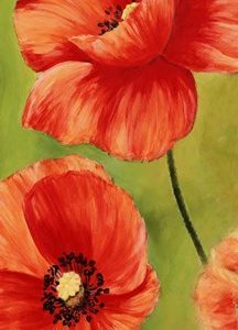 Poppies in the Wind I