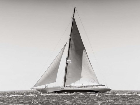 Classic  Racing Sailboat