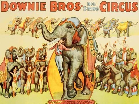 Downie Bros. Big 3 Ring Circus, 1935