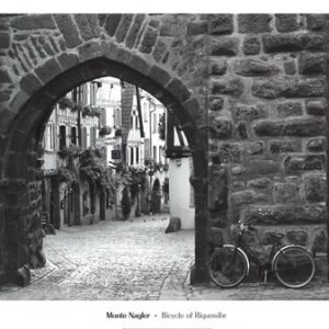 Bicycle of Riquewihr