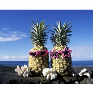 Hawaii USA Pineapples