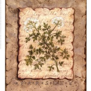 Vintage Herbs - Parsley