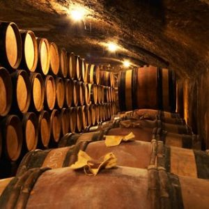 Wooden Barrels with Aging Wine in Cellar