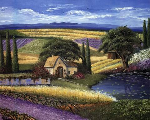 Vineyard Home