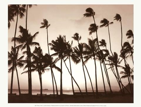 Platinum Palms I