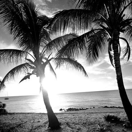 BW Bimini Sunset I
