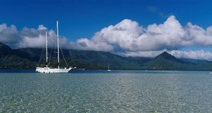 Sailboat in a bay, Kaneohe Bay, Oahu, Hawaii, USA