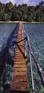 Bridge to Paradise