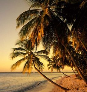 Beach at Sunset, Trinidad, Caribbean