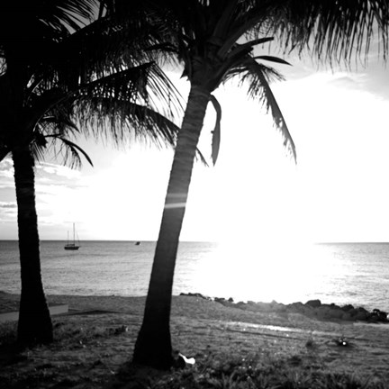 BW Bimini Sunset II