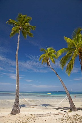 Hammock and palm trees, Plantation Island Resort, Malolo Lailai Island, Mamanuca Islands, Fiji